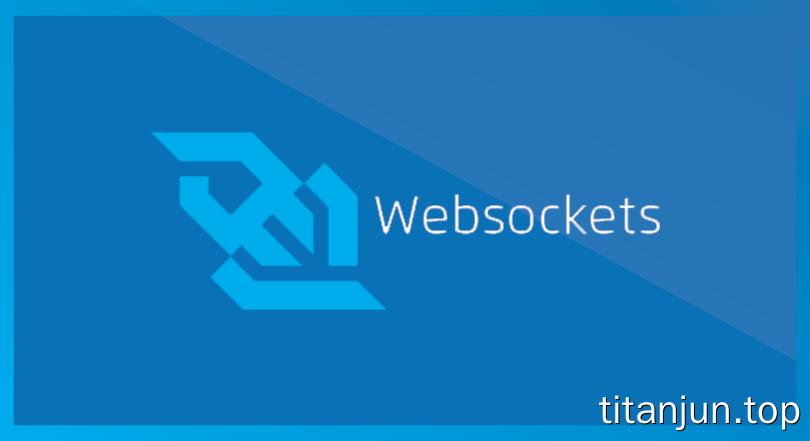 webSecket